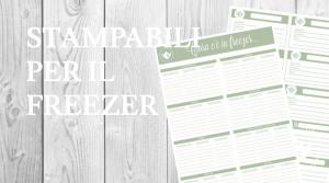 etichette stampabili alimenti freezer