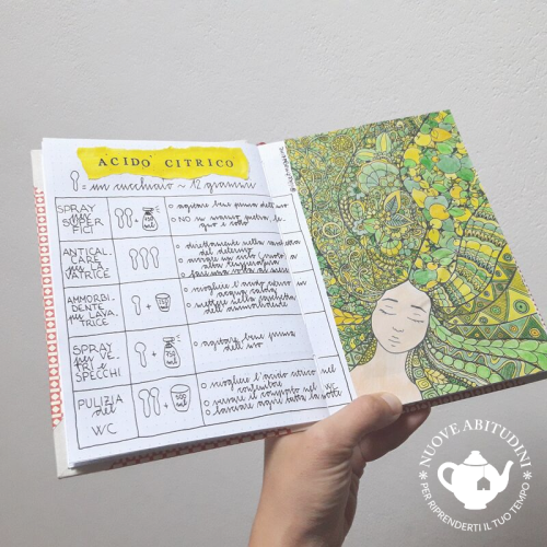 acido citrico home bullet journal